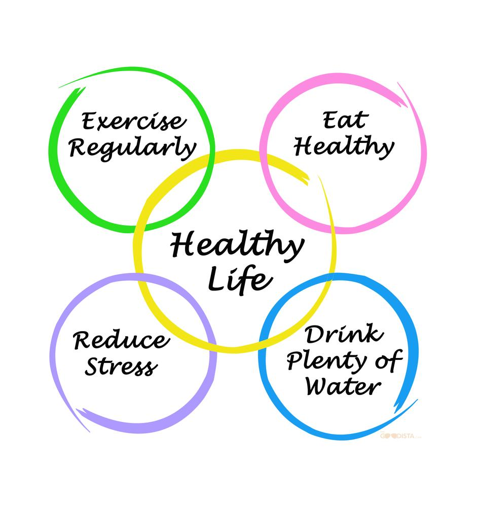 HIIT or Cardio? Include all the aspects of a healthy lifestyle as seen in picture.