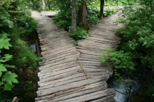 The Field Mission Dilemma - A choice with equally unattractive solutions illustrated by a three way wooden path